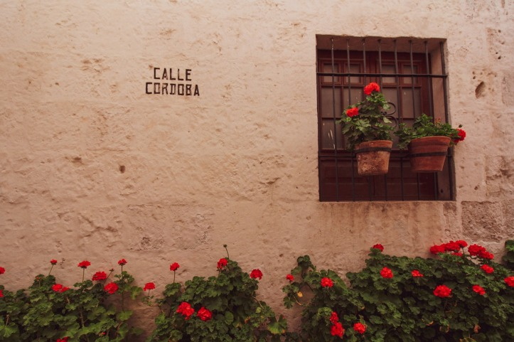 santa-catalina-3416882_1280