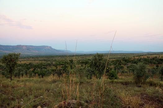 Kimberley 2014 (502)