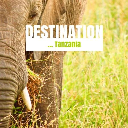 IMG_3819ravel Tanzania, Tarangire National Park ...