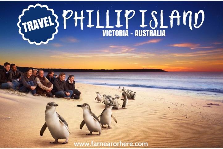 Visit Phillip Island, Australia ...