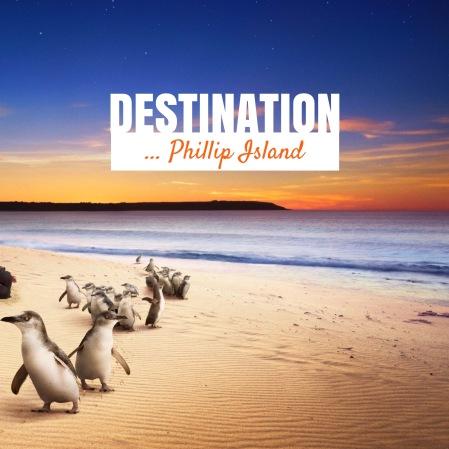 Phillip Island feature image