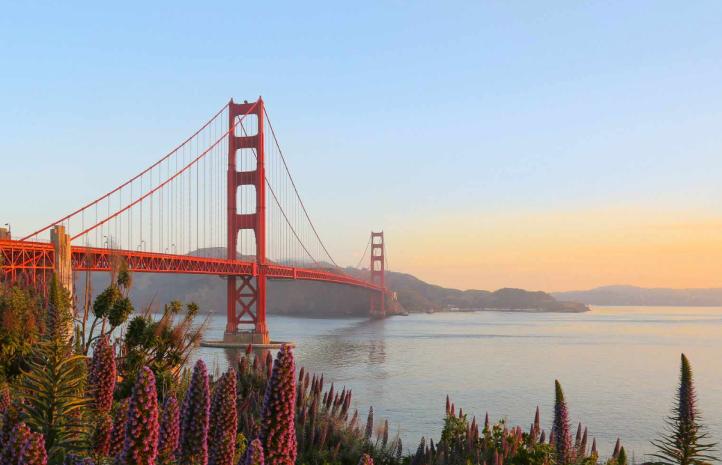 San Fran view