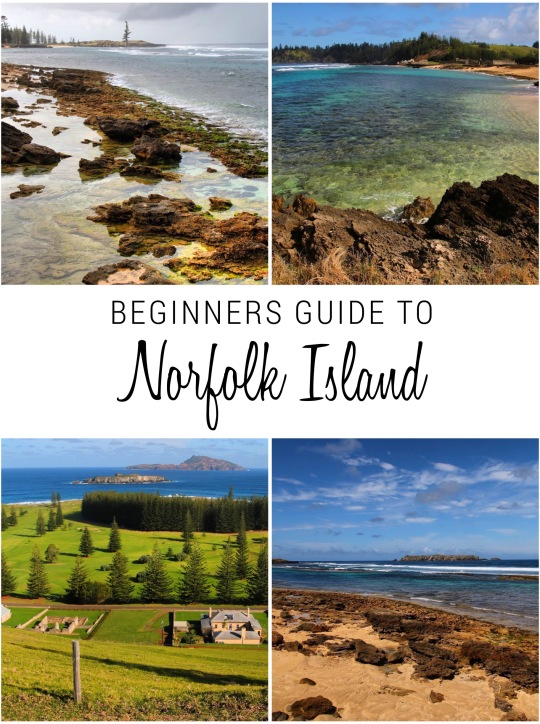 Beginners guide to Norfolk Island, the other South Pacific island...