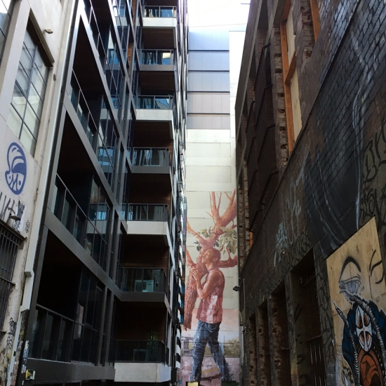 Savouring street art in Duckboard Place, Melbourne