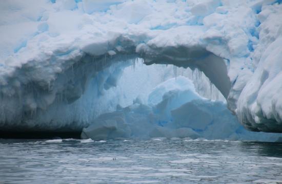 Antarctica, Cierva Cove. Photographer Sarah Nicholson