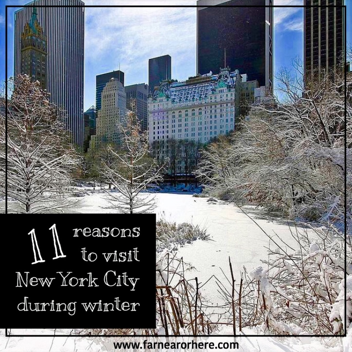 Reasons to visit New York during winter ...