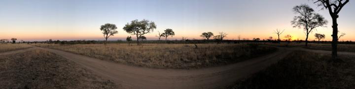 Sabi Sabi sunset